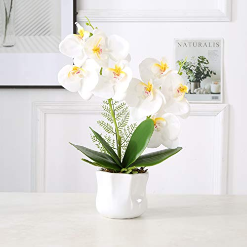 ENCOFT Kunstblume Kunstpflanze Künstliche Blumen Wohndeko mit Übertopf Garten Balkon Wohnzimmer...