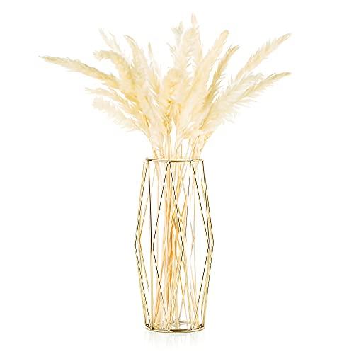 Vase Für Pampasgras, Glasgoldvase Hochbodenvase Mit Geometrischem Metallgestellständer,...