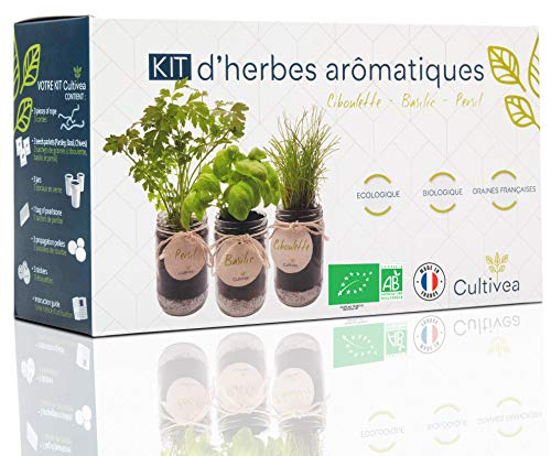 Cultivea –Bio Kräuter Anzuchtset -100% Öko Kräutersamen – Indoor Garten – Bio Samen– Das...