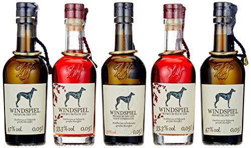 Windspiel Premium Gin Probierset 5 x 0,05L – Geschenk Set für Gin Tasting