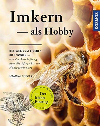 Imkern als Hobby: Der Weg zum eigenen Bienenvolk