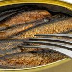 Fisch in der Dose von fish 4 ever