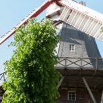 Geschenksets Ammerland / Bremen